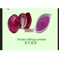 Wholesale Red Cabbage Natural Vegetable Powder With Anti Radiation / Inflammation from china suppliers