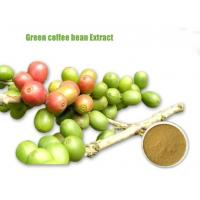 Wholesale Green Coffee Bean Extract/Weight Loss Green Coffee Extract/Green Coffee Bean Extract Supplier from china suppliers