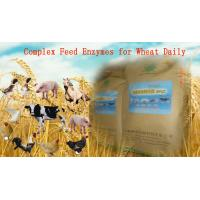 China Yellowish Powdered Complex Poultry Feed Enzymes For Wheat Daily Diet Szym-nutriWH on sale