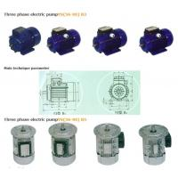 Wholesale Three phase electric pumpYS(56-90) B3 from china suppliers