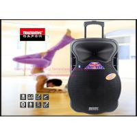 Wholesale Big 100 Watt Portable Pa Speaker System 15 Inch with Bluetooth from china suppliers