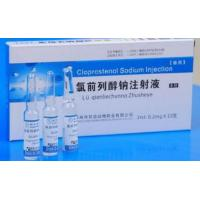 Wholesale Pharmaceutical Veterinary Medicine Cloprostenol Sodium Injection (PG) 5ml 2ml from china suppliers