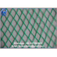Wholesale ANTI BIRD VEG FRUIT PLANT POND NET GARDEN NETTING PROTECTION WATER 2 X 10M from china suppliers