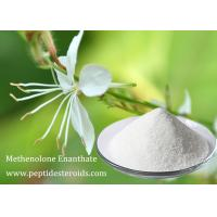 Wholesale Legit Methenolone Enanthate Primobolan Steroid Depot Raw Steroid White Powder from china suppliers