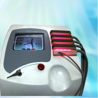 Wholesale SPA Used Professional Lipo Laser Slimming Machine 5A For Body Sculpting , IPXO from china suppliers