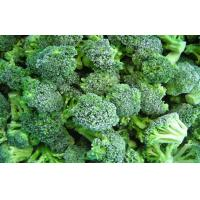 Wholesale Natural Organic Frozen Broccoli Cauliflower Health Benifits , Antioxidants from china suppliers