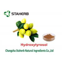 Wholesale Olive Leaf Herbal Plant Extract , Organic Herbal Extracts Solvent Extraction Type from china suppliers