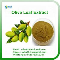Buy cheap High Quality Plant Extract Olive Leaf Extract from wholesalers
