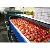 Wholesale High Speed Vegetable and Fruit Processing Machine / Apple Juice Making Machinery from china suppliers