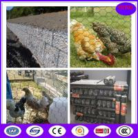 Wholesale Corrosion and oxidation resisting wire netting chicken mesh from china suppliers