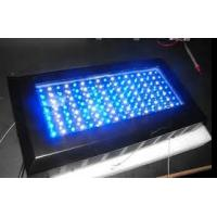 Wholesale High power Waterproof 120W led aquarium light fixture 50 / 60HZ for indoor garden from china suppliers