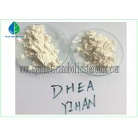 Wholesale CAS 853-23-6  Muscle Increasing Pharma Steroids Dehydroisoandrosterone 3-Acetate from china suppliers