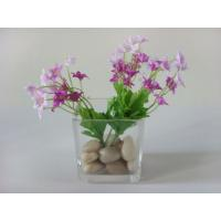 Wholesale Mini Square Glass Vases For Centerpieces For Home Decoration from china suppliers