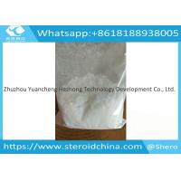 Buy cheap Pain Killer Local Anesthetic Anodyne Benzocaine Raw Powder CAS 94-09-7 Shipping to UK from wholesalers