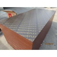 Wholesale 'MERINOPLEX' BRAND FILM FACED PLYWOOD, 'MR' GLUE, POPLAR CORE, BROWN PRINTED FILM from china suppliers
