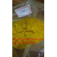 Wholesale DNP Yellow Powder 2,4 - Dinitrophenol DNP Slimming Pills C6H4N2O5 Lose Weight Hormones Steroids from china suppliers