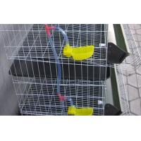 Buy cheap Metal Wire Layer Quail Cages for Sale from wholesalers