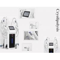 Wholesale OEM and ODM service body slimming cryoliplysis fat reduction machine from china suppliers