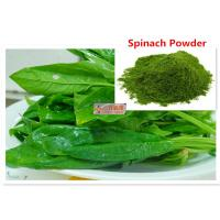 Wholesale Extraction Dehydrated Spinach Powder / Organic Dried Spinach Vegetable Extract from china suppliers