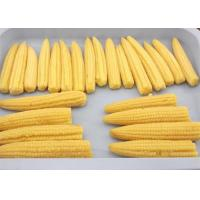 Wholesale A Grade Organic Canned Vegetables Baby Corn from china suppliers