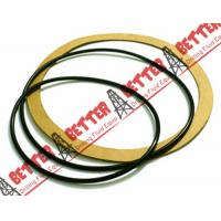 Wholesale Power End Gasket Kit Mission Magnum 250 Centrifugal pump Buna-N and Fiber from china suppliers