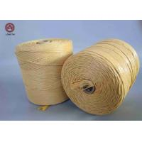 Wholesale UV Treated Flame Retardant PP Twine for Mats Weaving or Package Baler from china suppliers