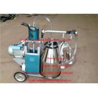 Quality Single Bucket Mobile Milking Machine For Cows Cattle , 220v Voltage for sale