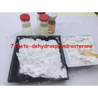 Wholesale Anabolic Nandrolone Steroid Loss Powder 7-Keto-Dehydroepiandrosteron 566-19-8 from china suppliers