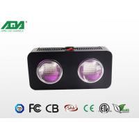 Wholesale Cob Led Grow Light 300w Agriculture LED Lights With High PAR Value from china suppliers