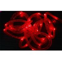 Quality Party Home Holiday Transparent Led Outdoor String Lights With PVC Tube Cover for sale