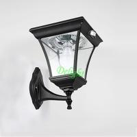 Wholesale Outdoor Solar led Wall Lighting PIR Outdoor Wall Light (DL-MSW16) from china suppliers