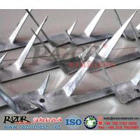 Wholesale Hot Dipped Galvanized Wall Spike from china suppliers