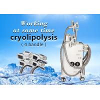 Quality Professional 4 Hand Pieces Cryolipolysis Fat Freeze Slimming Machine for sale