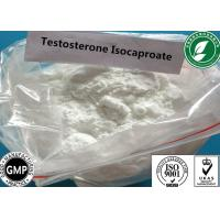 Wholesale Raw Steroid Powder Testosterone Isocaproate For Muscle Gain CAS 15262-86-9 from china suppliers