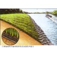 Wholesale erosion control mat EM2,EM3,EM4,EM5,plastic three dimensional erosion control mat from china suppliers