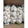 Buy cheap Natural China Fresh garlic Pure White normal white garlic from wholesalers