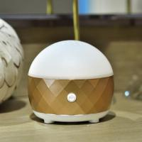 Quality CProfessional Portable Air Humidifier for Car and Home Oil Aroma Diffuser GK-BA6 for sale