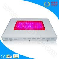 Wholesale 144X3W LED Grow Lights from china suppliers