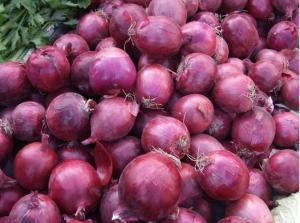 Wholesale Metabolism Enhancing Fresh 6cm Restaurant Red Onion from china suppliers