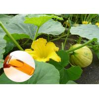 Wholesale Food Grade Natural Plant Extract Oil Cold Pressed Pumpkin Oil Prostate Protection from china suppliers