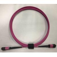 Quality Purple Optical Network Components , MPO - MPO fibre optic patch cord Multimode for sale