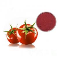 China Professional Manufacturer Supply Pure Natural Tomato Extract Powder Lycopene Powder 5% 10% 20% on sale