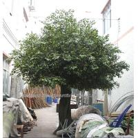 Buy cheap 10m huge outdoor park/resturant landsaping artificial banyan tree from wholesalers