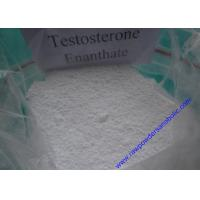 Quality Testosterone Enanthate Raw Powders Anabolic Hormone Promotion of Mass and Strength for sale