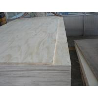 Quality Pine face and Back, Full pine core, Size: 1220X2440X5MM-25MM. for sale