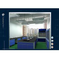 Wholesale Air-Conditioning System Science Lab Furniture , Biological Safety Metal Laboratory Cabinets from china suppliers