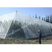 Wholesale White Crystal Color Raschel Knitted Polyethylene Agriculture Hail Protection Net , Anti Hail Nets from china suppliers