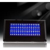 Wholesale High output Energy saving 100x3W-3AP/50 - 60Hz led aquarium lighting reef from china suppliers