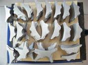 Quality Titanium and Titanium Alloy Custom-made Plates for sale