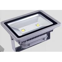 Quality MeanWell Driver Outdoor LED Flood Light  100W 4000K - 4500K 5 years Warranty for sale